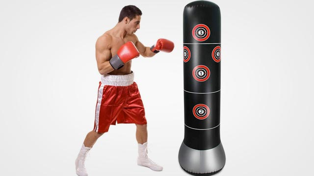 10 Best Free Standing Punching Bag in 2019 Reviews